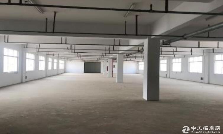 高淳经开区茅山路,厂房出租,高12米,可装10t行车-图3