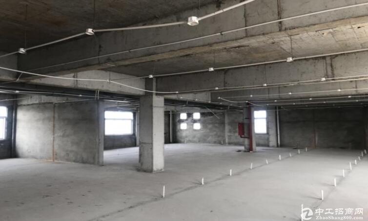 高淳经开区茅山路,厂房出租,高12米,可装10t行车-图4