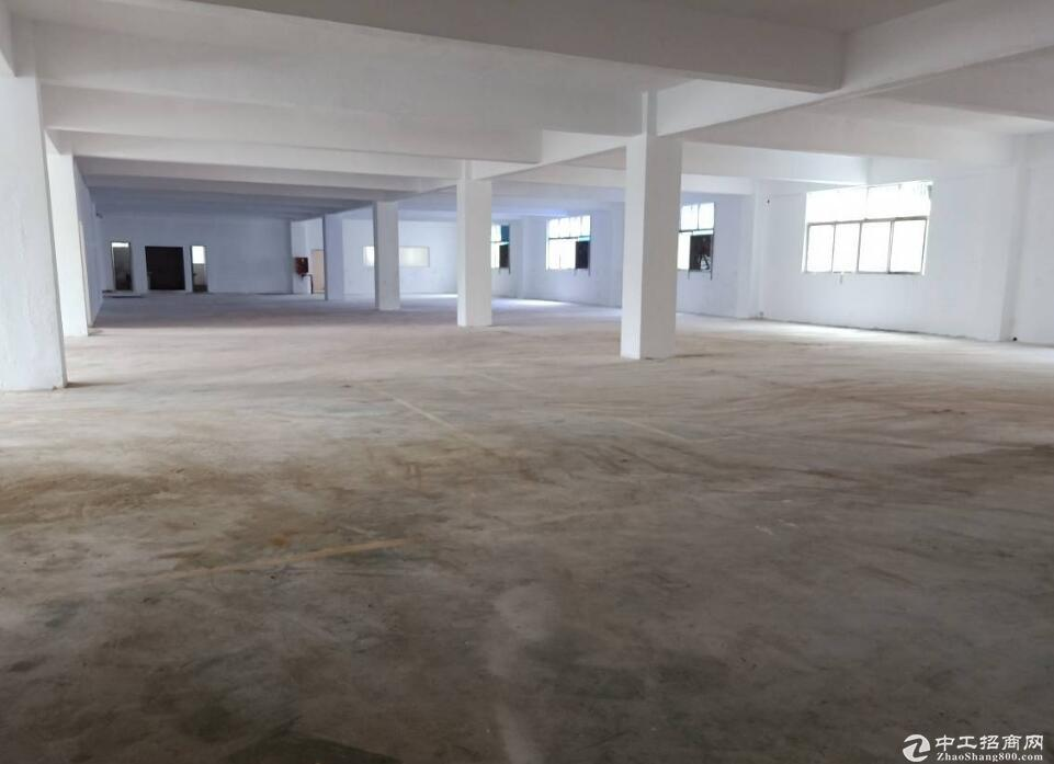 高淳经开区古潭路,2400平标准厂房出租,层高3.5米