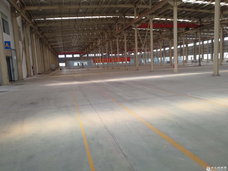 新农镇104板块仓库出租精装办公,层高11米,仓储