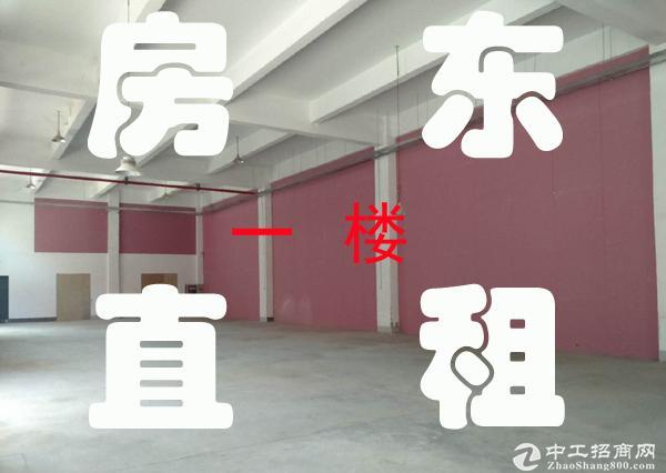 昆山开发区19886平米丙类标准厂房出租 可分租