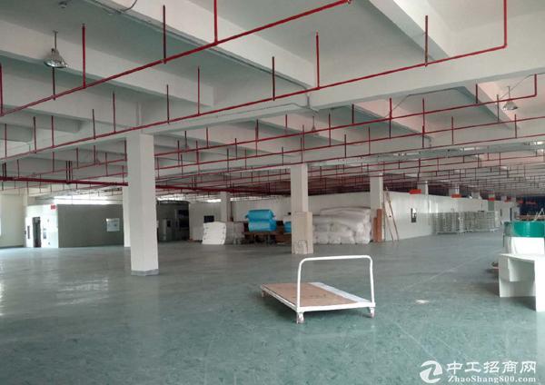 昆山开发区19886平米丙类标准厂房出租 可分租-图2
