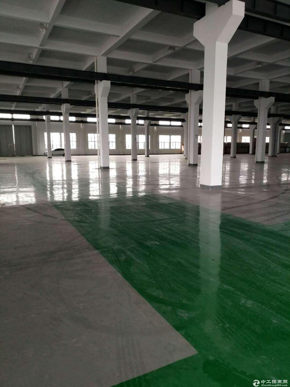 兴塔镇贵泾支路附近标准厂房仓库出租,仓储 物流