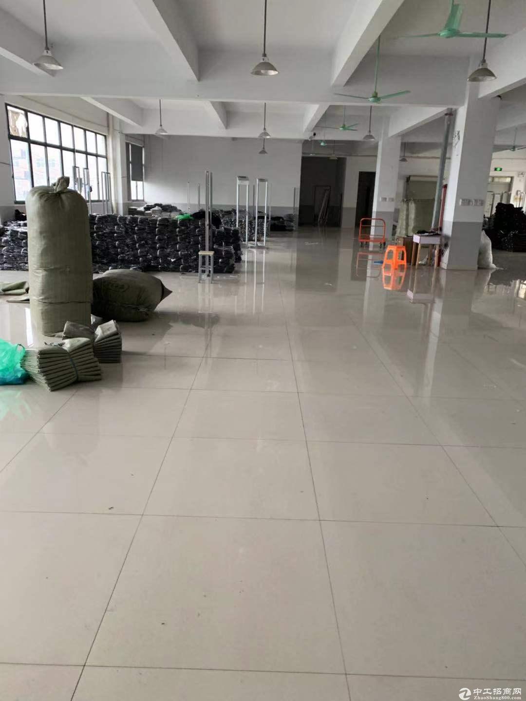 (出租)桐乡市洲泉600平标准厂房独门独院