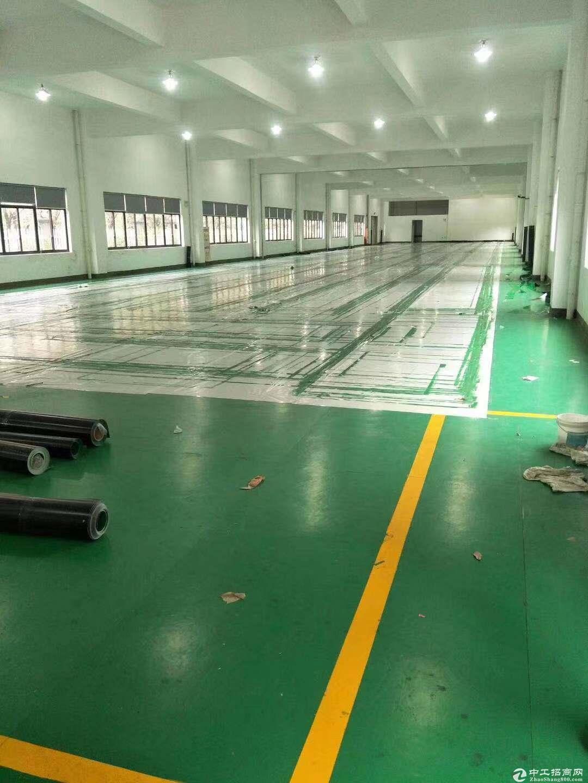 (出租)桐乡市石门7000平厂房可分租独门独院