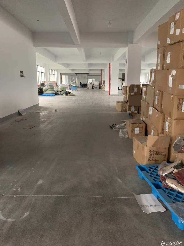 (出租)桐乡市濮院2000平厂房可分租独门独院