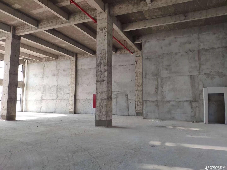 江北新区产业园区,600平米起,交通便利。-图4