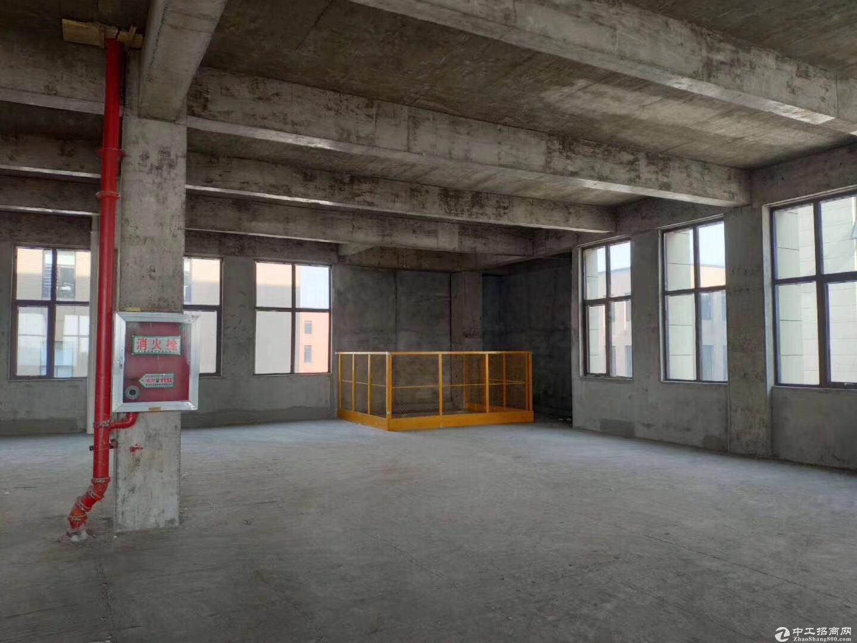 江北新区产业园区,600平米起,交通便利。-图5