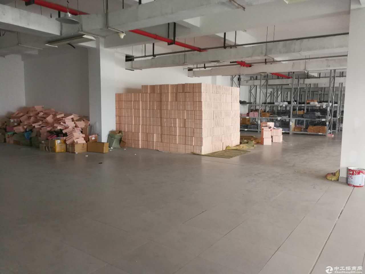 萧山开发区 机场高速下800方 轻加工 仓库 展厅
