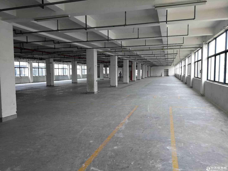 开发区2200方不要税收可以做仓库 中转站 有食宿-图5
