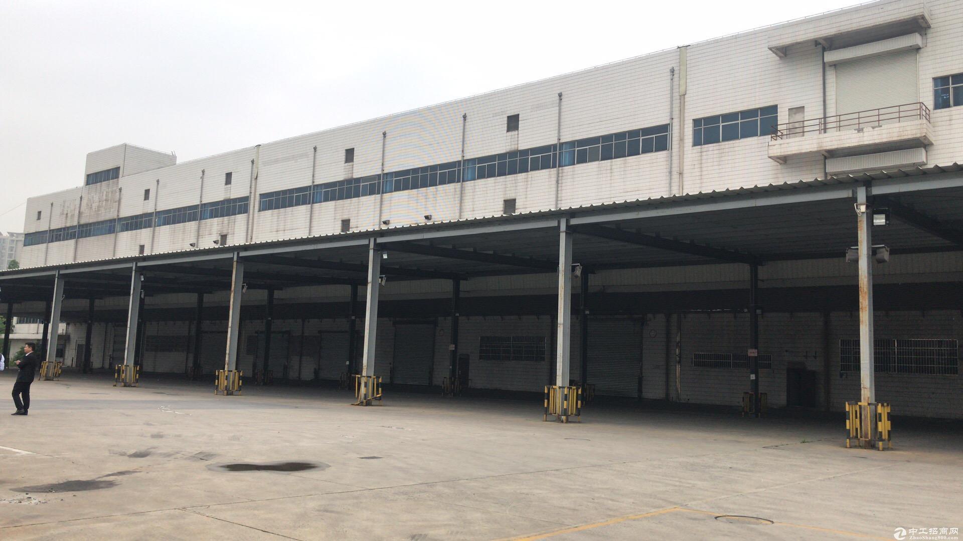 中环近浦东金桥仓库3.2万方、场地30亩、可分割