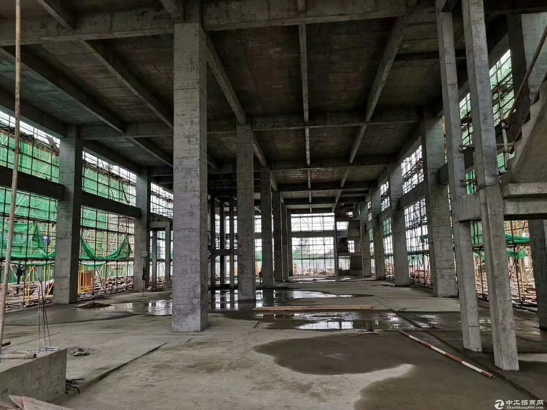 层高8.1米、50年产权厂房出售