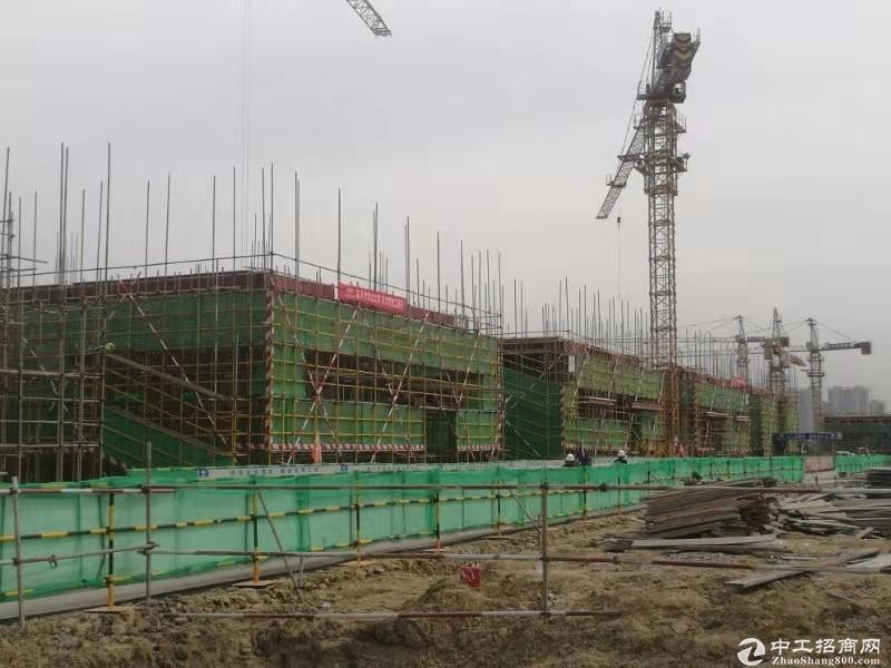 厂房出售、首付2成、8.1米层高可做隔层