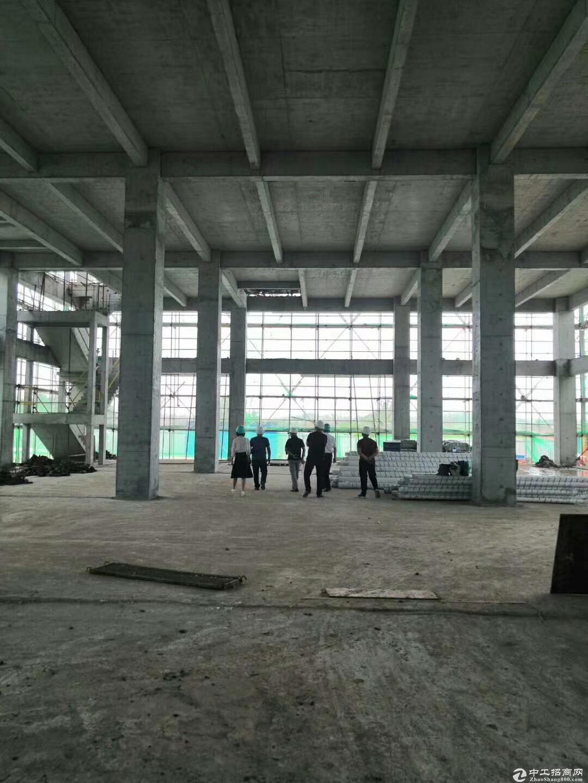 厂房出售、层高8.1米、首付2层、可环评