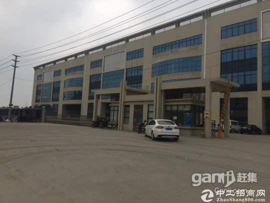 板芙新出钢结构单一层5300平方米厂房
