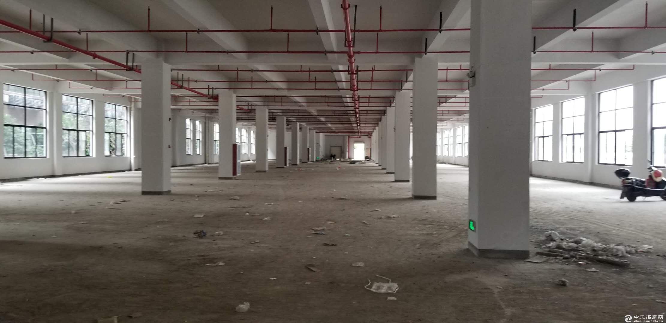 临平标准厂房1800方出租,交通便利