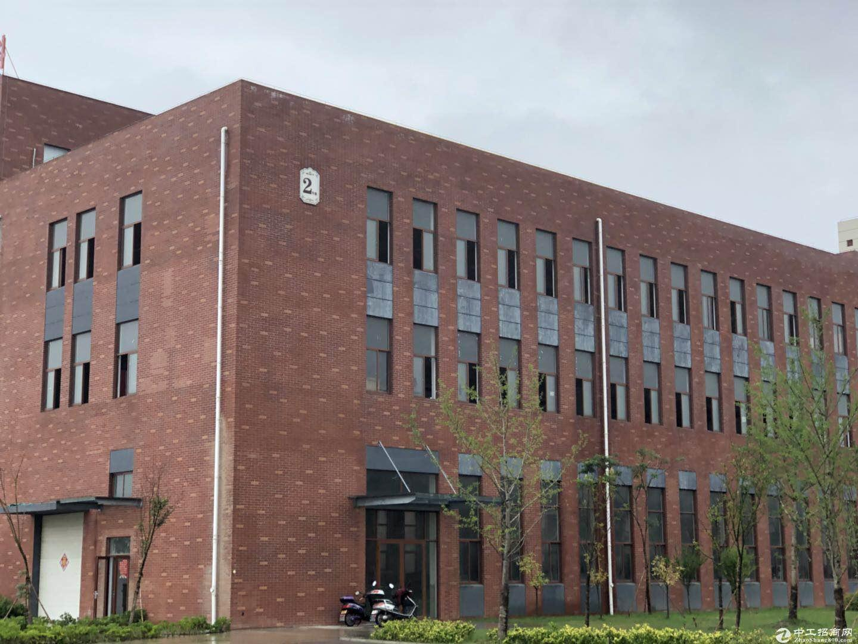 肥西、双凤标准化产业园区厂房出售层高8.1米、首付2层