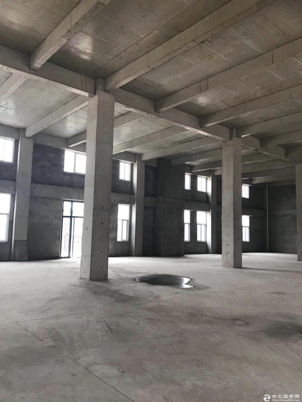出售 层高7.2米  企业独栋 可环评