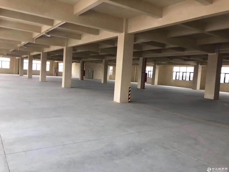 江海高新区标准厂房楼上1680方出租 可分租