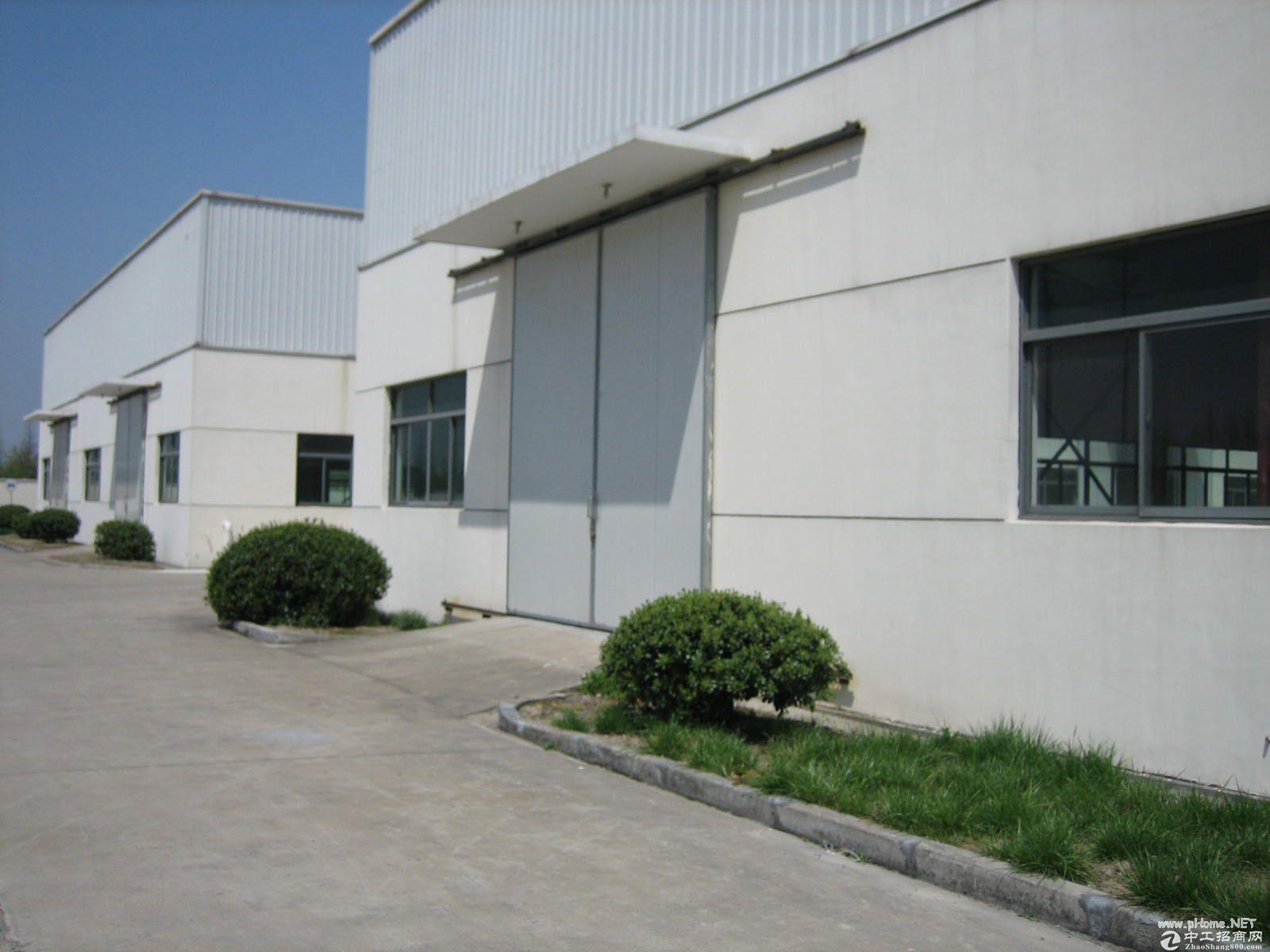 (出租) 康桥新出单层厂房 无立柱 层高11米 可做球馆