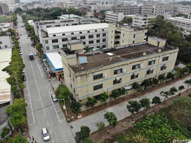 东莞市石排红本厂房出售占地3000平米建筑5200平米