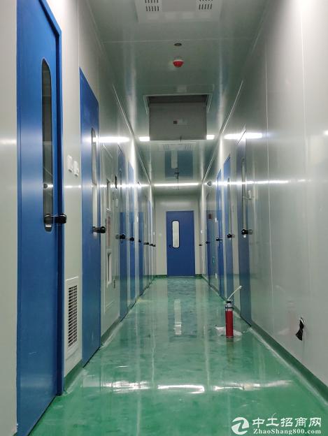 出租生物医药研发实验室及GMP厂房  有环评