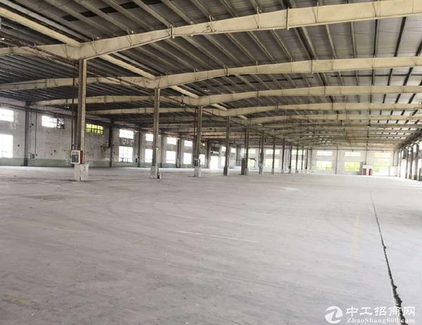 周市8500平米标准单层厂房出租 可分租
