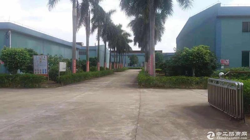 化工园区标准单一层厂房仓库38亩出售二级工业用地