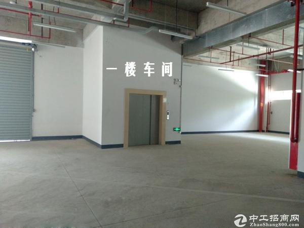 花桥全新独院厂房出租 有空地17亩