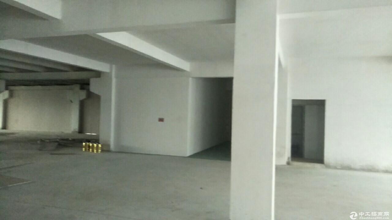 江海高新工业园楼上标准厂房1000方出租 电大按需