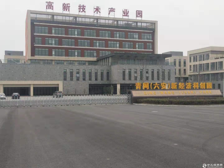 楼正门位置3600标准厂房 政府前期底价招商