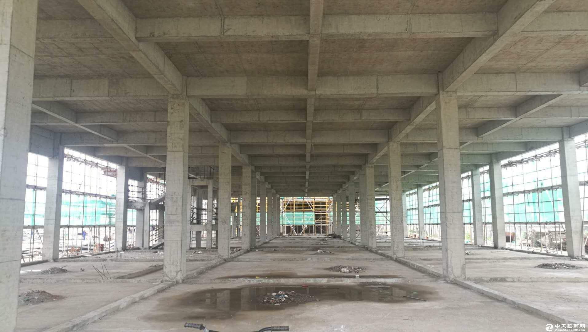 杭州50年獨立產權標準廠房 獨層800平小戶型 可按揭