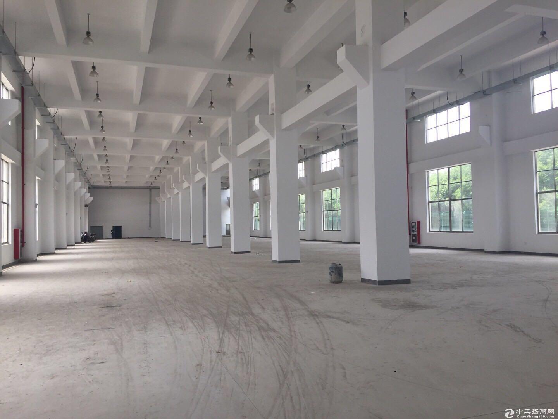 奉浦独门独院48000平方4层标准厂房