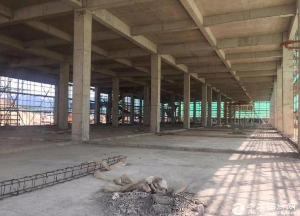杭州50年独立产权标准厂房 两层独栋1800平