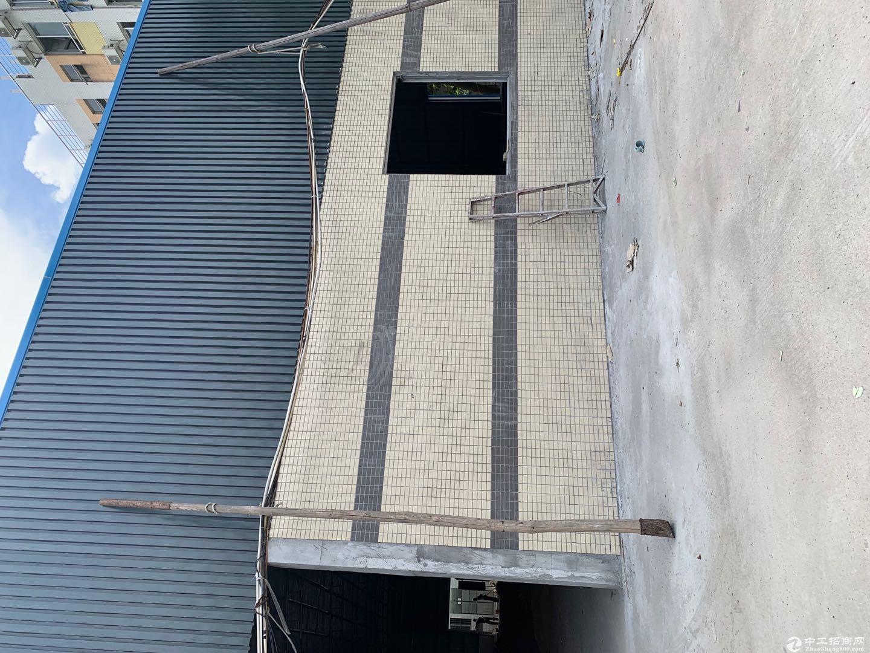 江海高新区科苑西单一层厂房1280方 电大按需