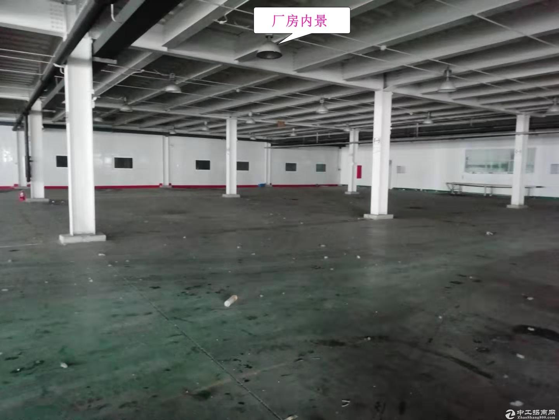 空港【32000平厂区出租】车间、仓库、办公均有,整租分租均可!-图3
