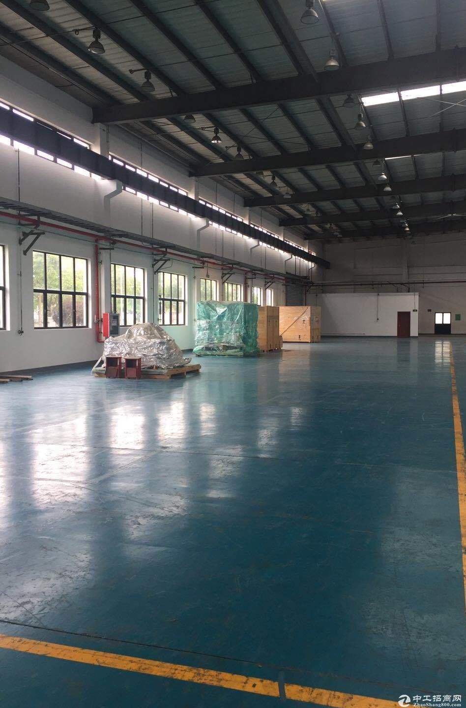 浦东临港出租1000平厂房 可做木制品 可带少量油漆