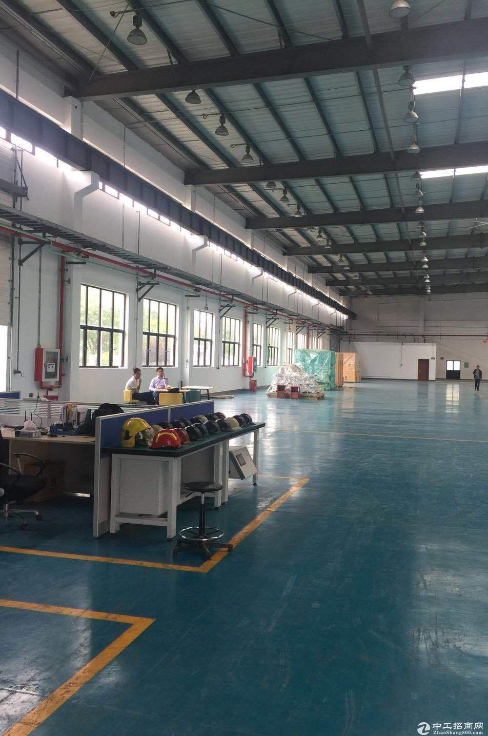 浦东临港出租1000平厂房 可做木制品 可带少量油漆-图2
