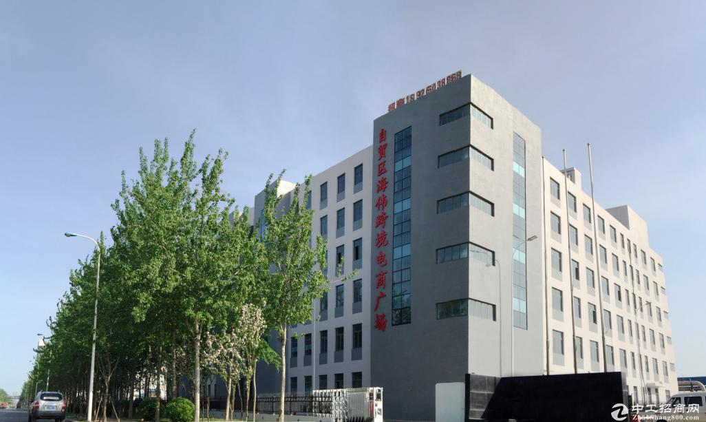 天津保税区临港楼栋出售、出租招商
