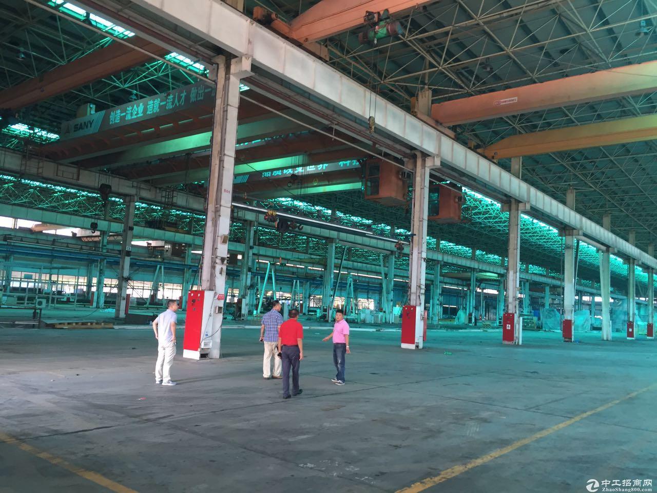 川沙独栋厂房出租高15米 机械加共生铲环评 仓储物流行业-图2