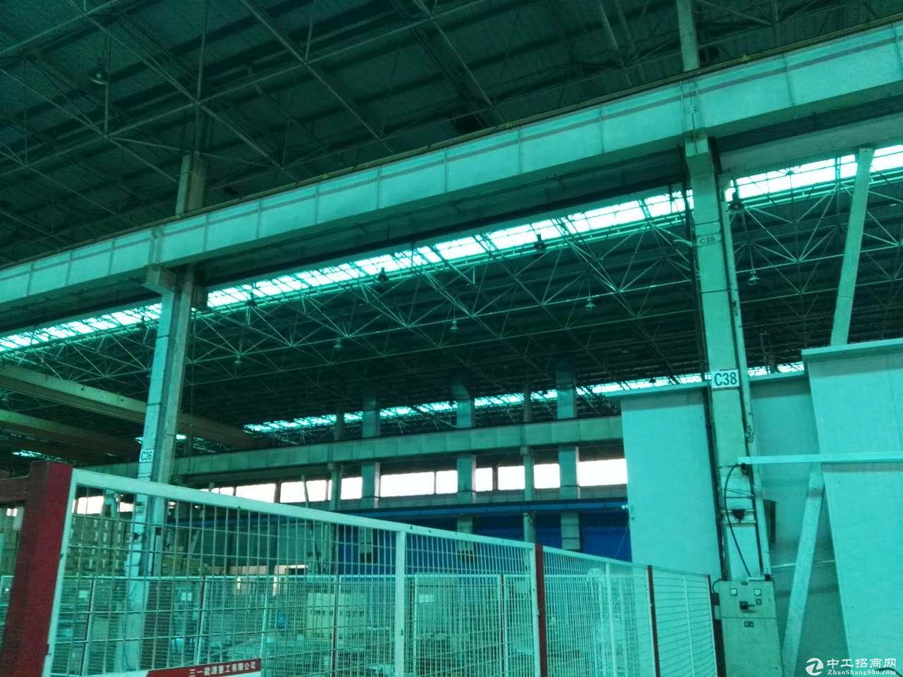 川沙独栋厂房出租高15米 机械加共生铲环评 仓储物流行业-图4