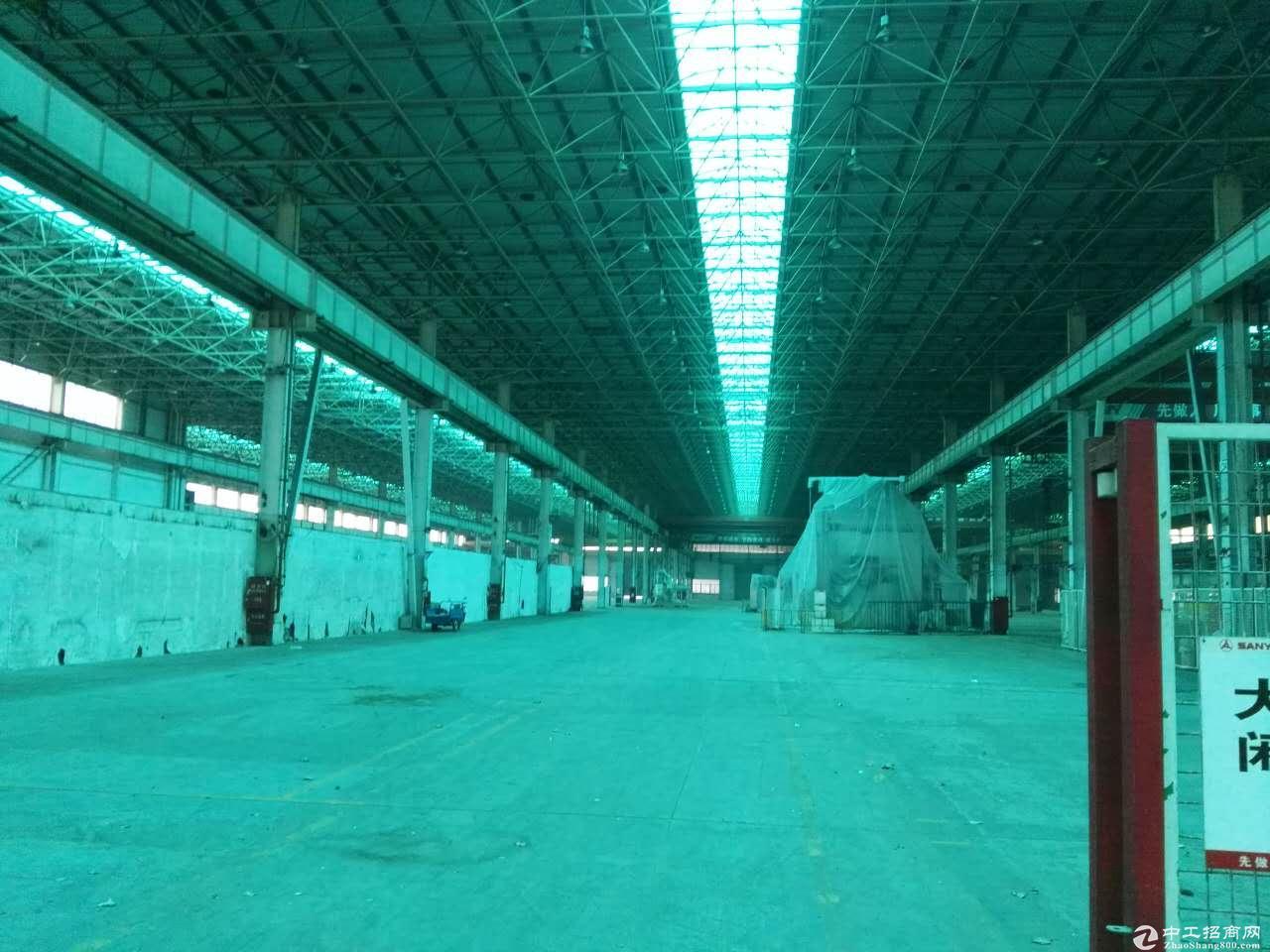 川沙独栋厂房出租高15米 机械加共生铲环评 仓储物流行业-图5