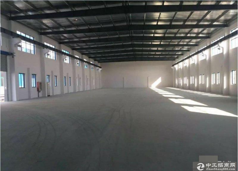 车墩104板块独门独院单层4000平米厂房出租
