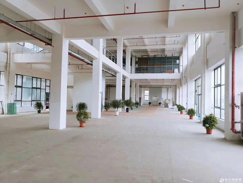 新桥独院独栋食品园区出租三证齐全小面积150平起分