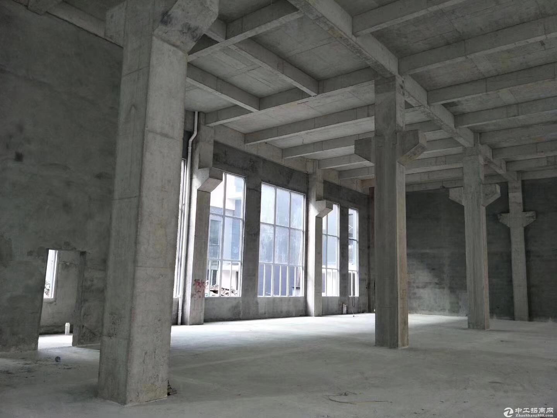 台山50年产权厂房。3层首付