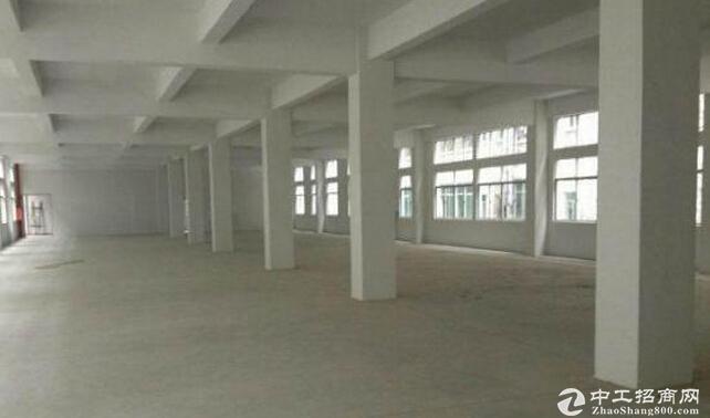 出售肇庆端州新型产业园厂房