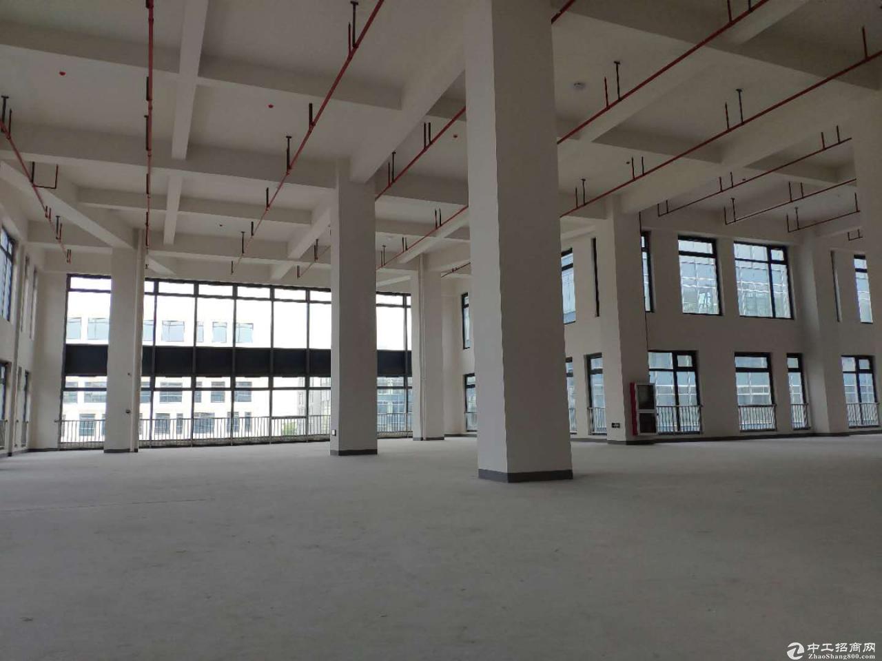 出售端州新型产业园厂房