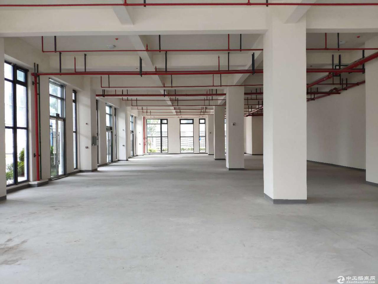 出售端州新型产业园厂房-图2