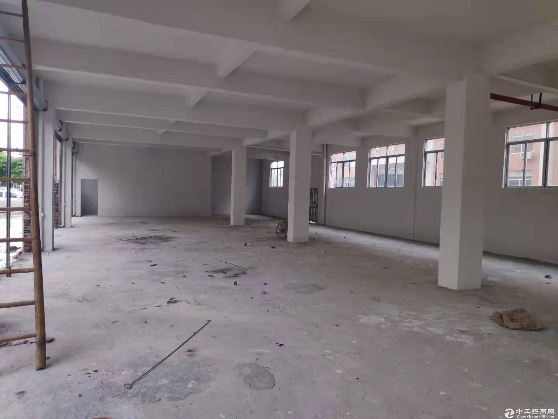 江海高新区高新东全新标准厂房一楼400方出租 可分租