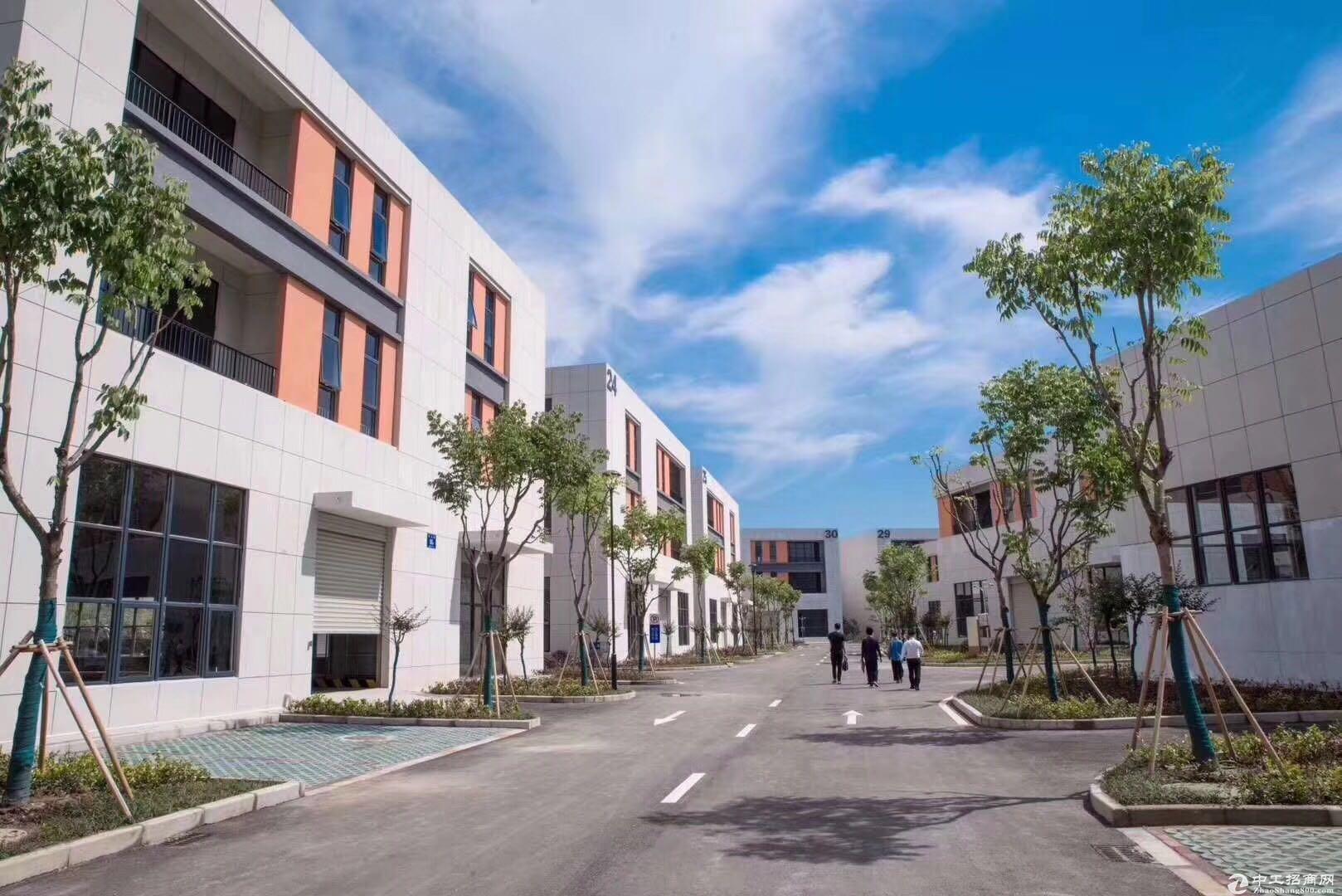 租金收益是住宅2倍的厂房价值投资,新会50年产权厂房,3成首付,10年按揭